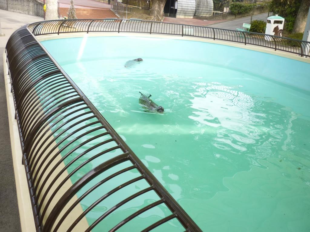 大牟田市動物園様(福岡県大牟田市)